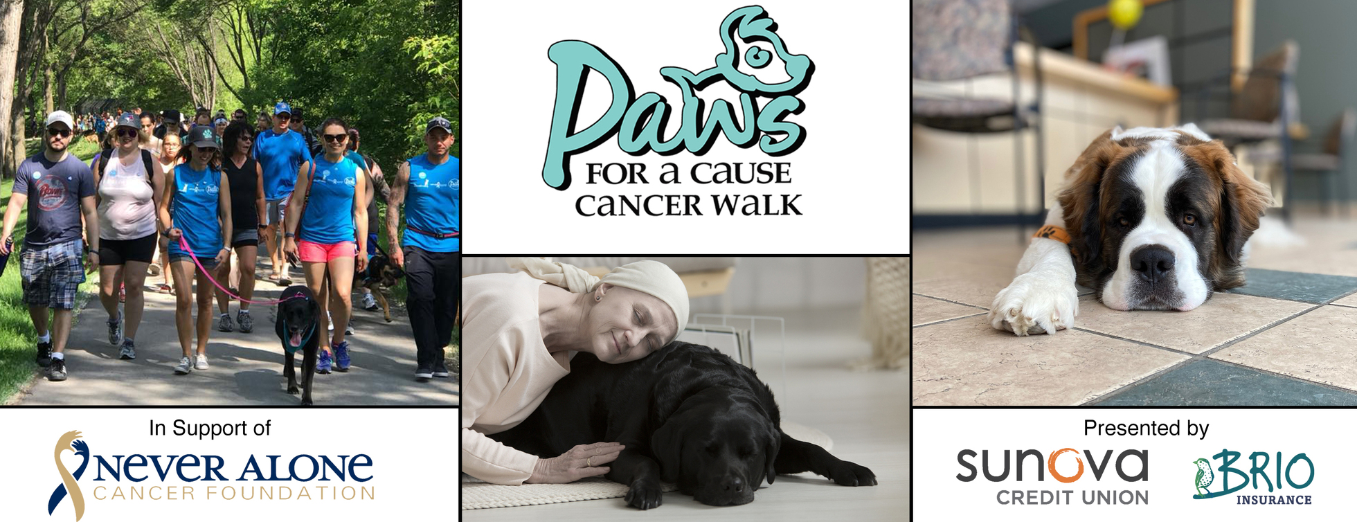 Paws for a Cause Cancer Walk 2020